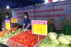 Siêu thị ở Hà Nội và TPHCM vào cuộc 'giải cứu' nông sản Hải Dương
